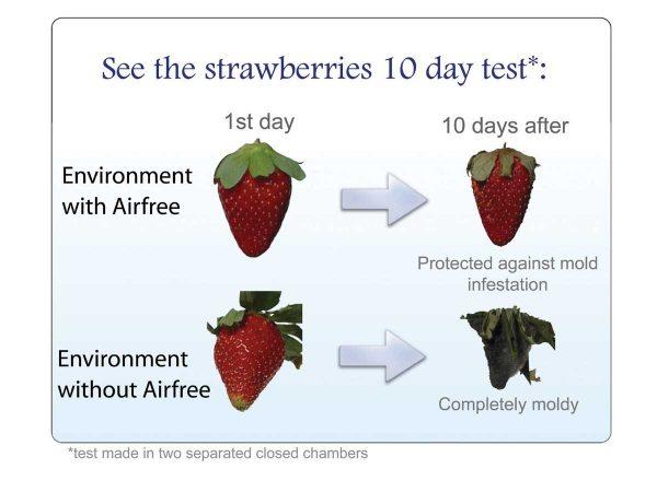 Strawberry test